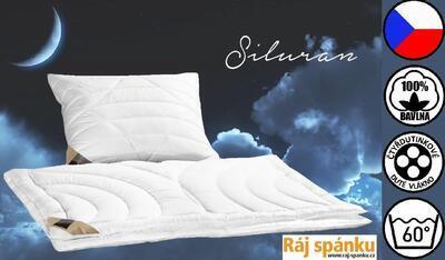 Siluran Přikrývka - 6
